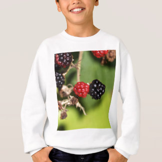 Red and black blackberry fruits. sweatshirt