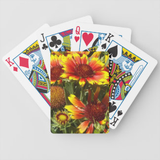Red and Orange Daisies Bicycle Playing Cards