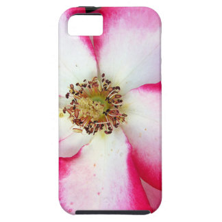 Red and white flower closeup iPhone 5 case
