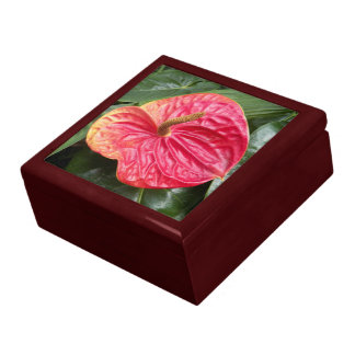 Red Anthurium Floral Gift Box