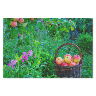 Red apples cottage garden with sweet pea flowers tissue paper