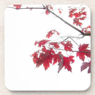 red autumn leaves on a branch coasters