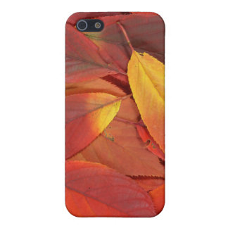 Red autumn leaves on Iphone case iPhone 5 Covers