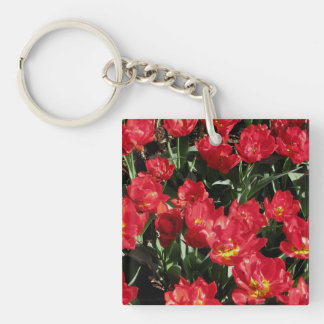 Red Beauties Key Ring
