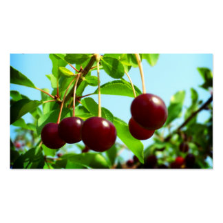 Red cherries - add your own touch pack of standard business cards