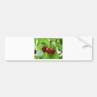red cherries bumper stickers