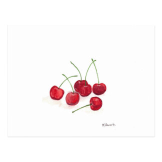 Red cherries fruit postcard