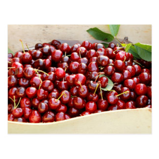 Red cherries Postcard