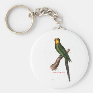 Red Collared Parakeet Bird Keychain