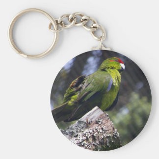 Red-crowned Parakeet Basic Round Button Key Ring