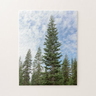 Red Fir Trees on Mt. Shasta California Puzzle