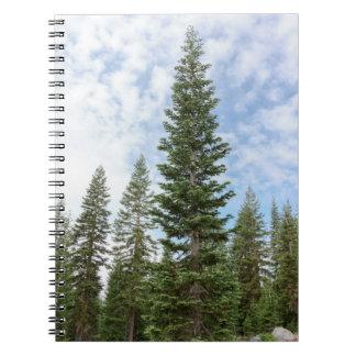 Red Fir Trees on Mt Shasta Notebook