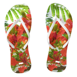 Red Flamboyan Tree Puerto Rico Thongs