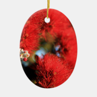 Red flowers Pohutukawa tree Ceramic Oval Decoration