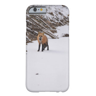 red fox in snow barely there iPhone 6 case