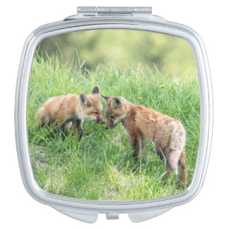 Red Fox Kits Mirror For Makeup