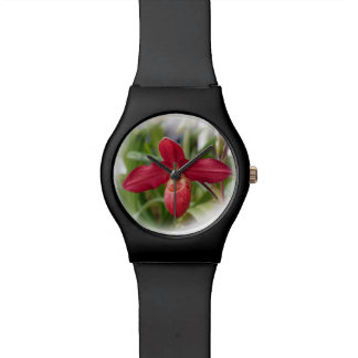 Red Lady's Slipper Orchid Watch