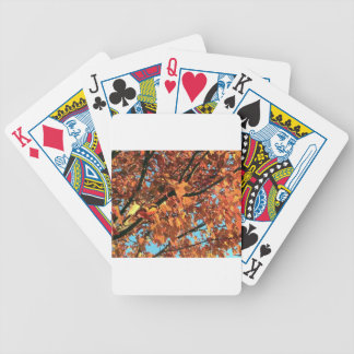 RED MAPLE TREE IN AUTUMN FALL BICYCLE PLAYING CARDS