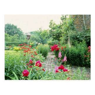 Red Mixed Cottage Garden - Peony, Pyrethrum, Alliu Postcard