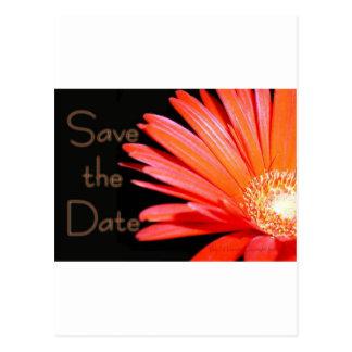 Red Orange Gerbera Daisy Save the date Postcard
