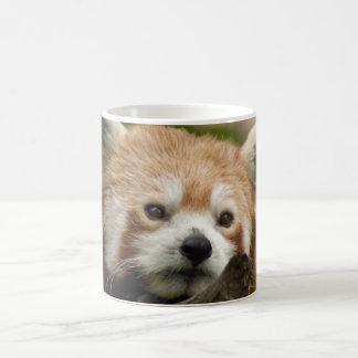 red-panda-014 magic mug