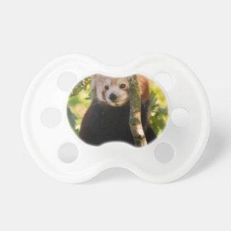 Red panda dummy