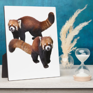 Red Panda Plaque