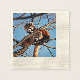 red pandas paper napkin