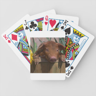 Red Piglet Pig Playing Cards