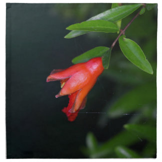 Red pomegranate flower (Punica granatum) on a tree Napkin