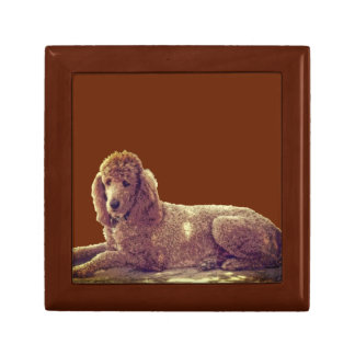 RED POODLE AT REST GIFT BOX