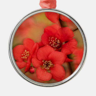 Red Quince Blossom Christmas Ornament