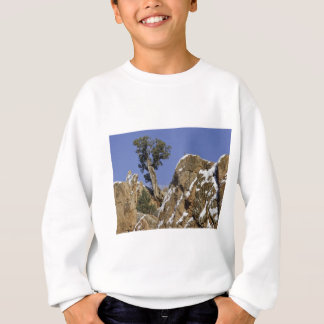 Red Rock Canyon 7 Sweatshirt