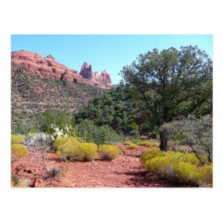 Red Rocks and Cacti II in Sedona Arizona Postcard