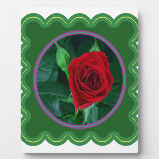 Red Rose Flower Floral Sensual Image 100 gifts Plaque