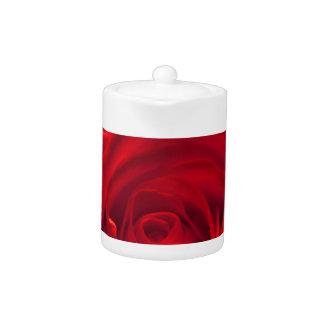 Red rose macro admission