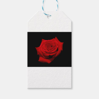 Red Rose on Black Background Gift Tags