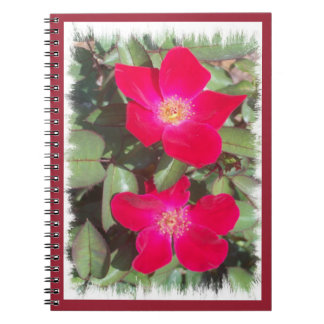 Red Roses Spiral Photo Notebook