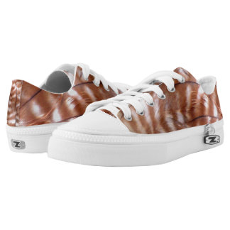 Red Shouldered Hawk Feather Low Tops