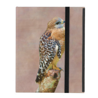Red-Shouldered Hawk iPad Cover