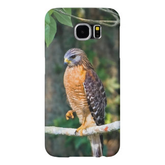 Red-Shouldered Hawk on a Limb Samsung Galaxy S6 Cases