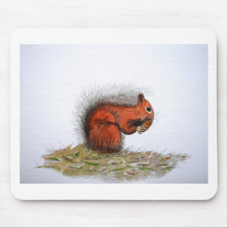 Red Squirrel pine cone Mouse Pad