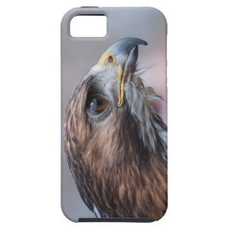 Red-Tailed Hawk Case