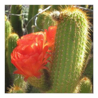 Red Torch Cactus 13 Cm X 13 Cm Square Invitation Card