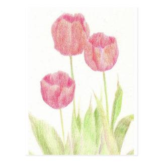 Red Tulip Spring Flower Cottage Garden Art Post Card
