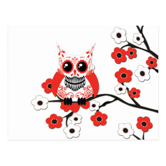 Red White Cherry Blossom Owl Postcard
