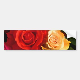 Red Yellow Rose Bumper Sticker - Customisable