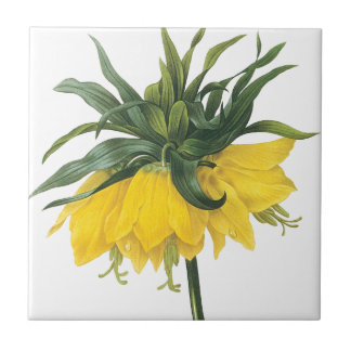 Redoute Yellow Flower Imperial Crown Ceramic Tile