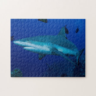 Reef Shark on the Great Barrier Reef Jigsaw Puzzle