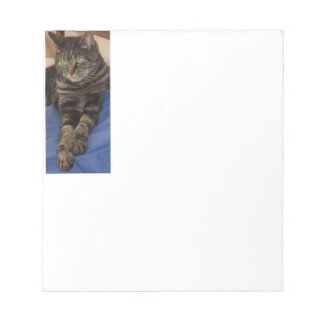 Regal Dave 40 Page Notepad